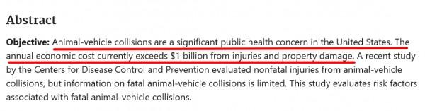 animal-vehicle-collisions-US